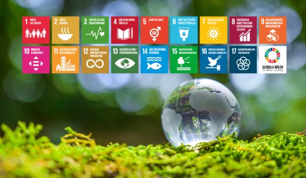 Globala målen mot en bakgrund av mossa