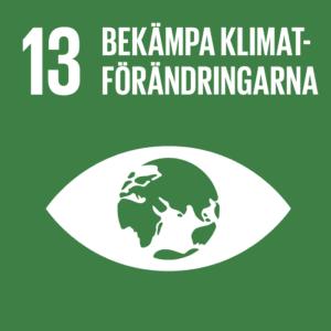 Mål 13 globala målen