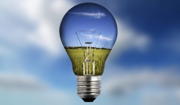 Glödlampa med natur inuti